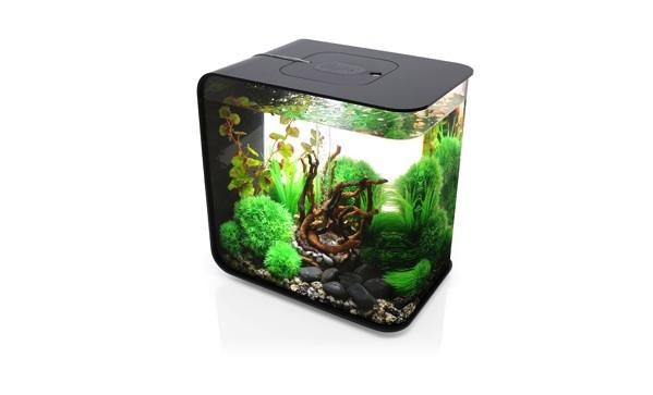 biorb flow 30 litre aquarium pursuit. Black Bedroom Furniture Sets. Home Design Ideas
