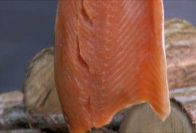 How to Make Smoked Salmon at Home