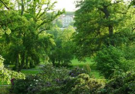Green Space is Good For Your Mental Health