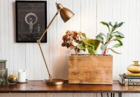 Modern Sprout Reclaimed Wood Hydroponic Planter