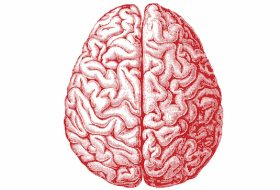 5 Rules to Keep Your Brain Aging Well