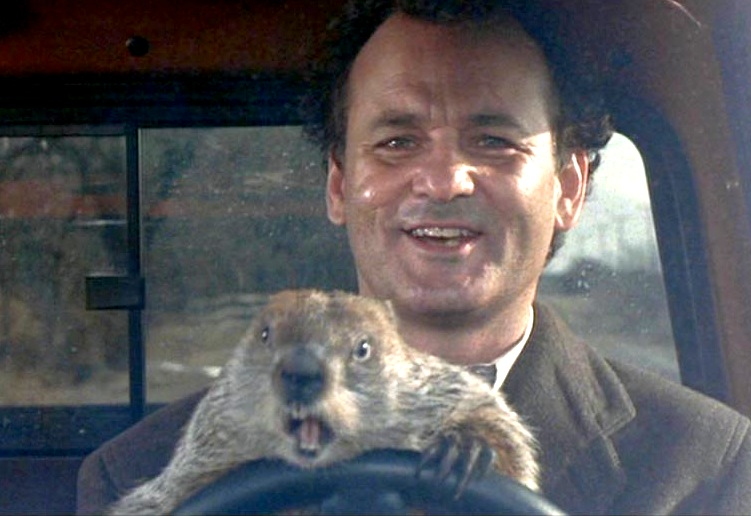 Bill Murray Sees Broadway Musical Groundhog Day & Then Sees It Again