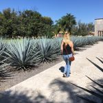 5 Unforgettable Experiences in the Tequila Region (And 1 That's Fuzzy but Still Recommended)